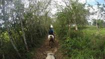 Private Kiskadee Trail: Horse Riding Tour of the Countryside, San Ignacio