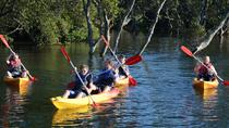 Kayak and SUP Guided Tours, Jervis Bay, Kayaking & Canoeing
