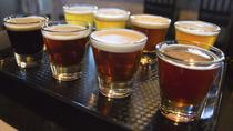 Lakeview and Lincoln Park Beer Tour, Chicago, Helicopter Tours