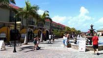 Shore Excursion: Private Ocho Rios Sightseeing Tour from Falmouth