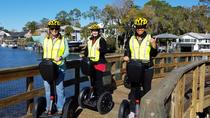 The New Perspective Manatee Tour, See The Manatee - Crystal River Segway Tours, Crystal River,...