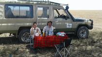 4 Days Best of mid-Range Northern Circuit Tanzania Safari, Arusha, Multi-day Tours