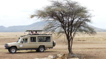 6-Day Epic mid-Range Tarangire Manyara Crater Serengeti, Arusha, Private Sightseeing Tours