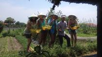 Farm-To-Table Healthy Cooking Class From Ho Chi Minh City, Ho Chi Minh-byen