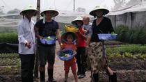Farm-To-Table Healthy Cooking Class From Ho Chi Minh City, Ho Chi Minh City, Cooking Classes