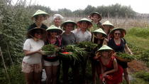 Ho Chi Minh City Full Day Cooking Class with City Tour, Ho Chi Minh City, null