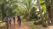 Exploring Siem Reap's Countryside by Bicycle, Siem Reap, Bike & Mountain Bike Tours