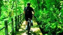 Jungle Cycling Tour from Bangkok, Bangkok, Bike & Mountain Bike Tours