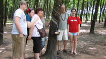 Private Half-Day Cu Chi Tunnels Tour from Ho Chi Minh City, Ho Chi Minh City, Half-day Tours