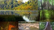Private tour - Nam Cat Tien National Park 2 days from Ho Chi Minh City, Ho Chi Minh City