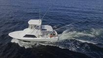 All-Inclusive Deep Sea Fishing Day Trip in Costa Rica, Liberia, Fishing Charters & Tours