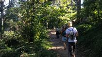 Day Hike in Sintra Natural Park, Lisbon, Private Sightseeing Tours