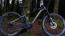 Sintra Unesco Heritage plus Natural Park ebike Guided Tour, Lisbon, Bike & Mountain Bike Tours