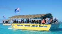 Half-Day Muri Lagoon BBQ Lunch Cruise including Snorkeling, Rarotonga, Day Cruises