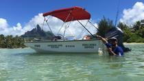 ECO SNORKELING TOUR, Bora Bora, Day Trips