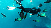 Snorkeling Package at Tulamben USAT Liberty Shipwreck, Bali, Scuba Diving