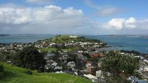 Auckland Shore Excursion: Small-Group Auckland Highlights Afternoon Tour, Auckland, Ports of Call ...