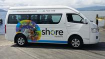 Shore Excursion: 6-hour Private Vehicle with Professional Guide from Tauranga, Tauranga, Ports of ...