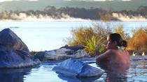 Shore Excursion: Rotorua Including Te Puia and Polynesian Spa from Tauranga, Tauranga, Ports of...
