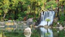 Shore Excursion: Te Puia and Rainbow Springs from Tauranga, Tauranga, Ports of Call Tours