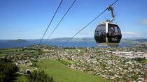 Shore Excursion: Te Puia and Skyline Rotorua from Tauranga, Tauranga, Ports of Call Tours