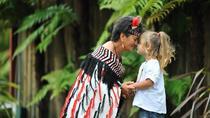 Shore Excursion: Te Puia, Jet Boat and Mokoia Island from Tauranga