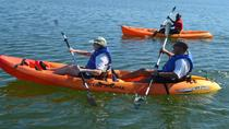 Rois Lagoon Kayak Tour in Falmouth, Falmouth, Kayaking & Canoeing