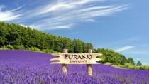 Furano and Biei Day Tour, Sapporo, Cultural Tours