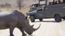 Full-Day Kruger Park Open Vehicle Safari from Hazyview, Kruger National Park, Safaris