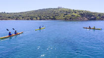 Small-Group Athens Sea Kayak Tour to the Temple of Poseidon, Athens, Half-day Tours