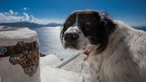 6 Hour Santorini Photography Day Tour