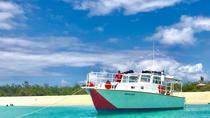 Icacos Snorkel Safari, Fajardo, Snorkeling