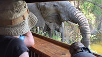 3-Day Tour of Kruger National Park from Skukuza Airport, Kruger National Park, Multi-day Tours