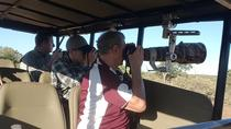 6 Day 5 Night Private Photographic Safari of Kruger Park from Skukuza Airport, Kruger National ...