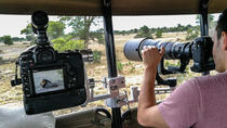 6 Day 5 Night Private Photographic Safari of Kruger Park from Skukuza Airport, Kruger National...