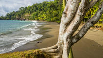 8-Day Costa Rica Natural Wonders Adventure Hike, San Jose, Multi-day Tours