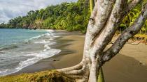 8 Day Costa Rica Natural Wonders Adventure, San Jose