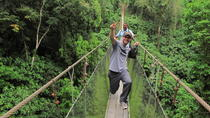 Arenal Hanging Bridges- Eco Farm and Luxury Hot Springs from San Jose, San Jose, Day Trips