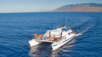 Maui Snorkeling Tour to Coral Gardens or Molokini Crater with Optional Lunch, Maui, Snorkeling