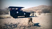 Cats Unlimited & Game Drive, Windhoek, Day Trips