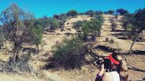 Small-Group Tour: Morning Hike at Daan Viljoen Reserve from Windhoek, Windhoek