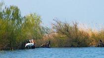 4-Day Danube Delta Tour: Stay At the Fisherman's house, Tulcea, Multi-day Tours