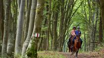 The Saxon trail with an Equestrian Adventure, Sibiu, 4WD, ATV & Off-Road Tours