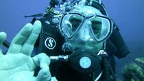 First-Time Diving Experience in Taormina Including Lunch at Isola Bella, Taormina, Scuba Diving