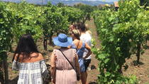 Mt Etna Wineries Tour from Taormina, Taormina