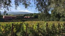 Mt Etna Wineries Tour from Taormina, Taormina, Day Trips