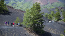 Small-group North Etna Tour by 4x4 Jeep, Taormina, Wine Tasting & Winery Tours