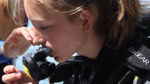 Taormina Children's Diving Experience: Bubble Maker Diving Course at Isola Bella , Taormina, Scuba ...