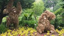 Small Group Tour to Atlanta Botanical Gardens, Atlanta, Segway Tours