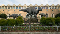 Small Group Tour to Fernbank Museum of Natural History, Atlanta